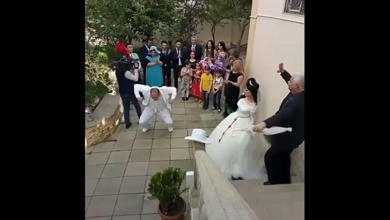 Танец самца
