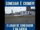 Dono HAVAN - Sonegador de impostos