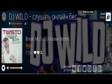 Dj Wild - Топовые композиции электронной музыки!