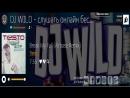 Dj Wild Топовые композиции электронной музыки