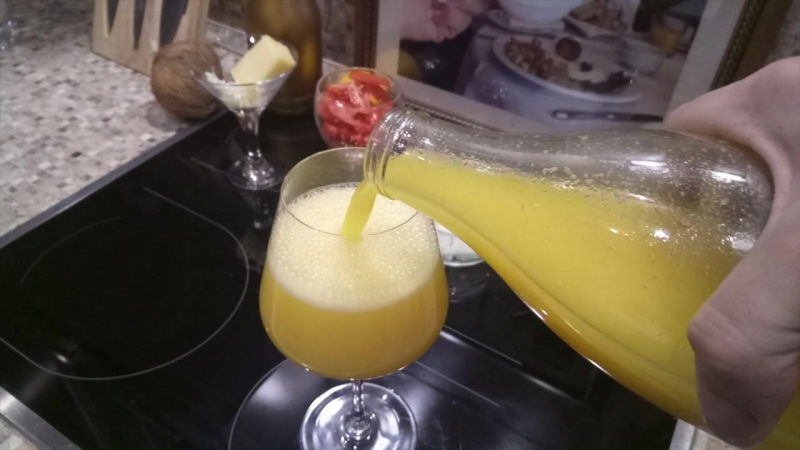 What is a Mimosa?!? :O » Freewka.com - Смотреть онлайн в хорощем качестве