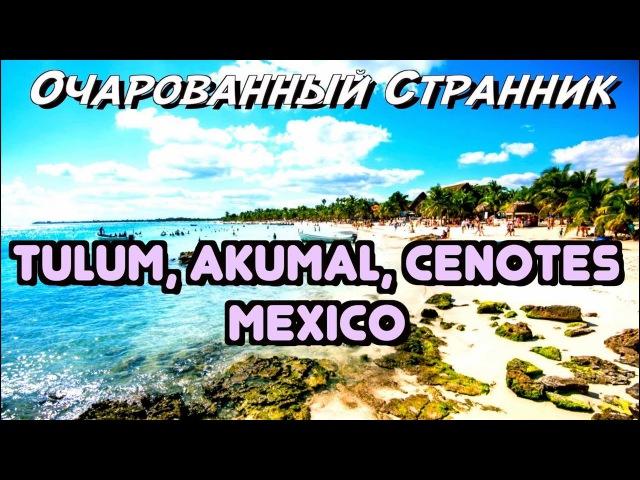 ОС 108 / Тулум, Акумаль, Сеноты, Полуостров Юкатан, Мексика / Tulum, Akumal, Cenotes, Mexico