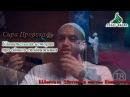 Пророк спросил Рабиа Ибн Кааба , что он хочет! - Ответ Рабия шокирует!