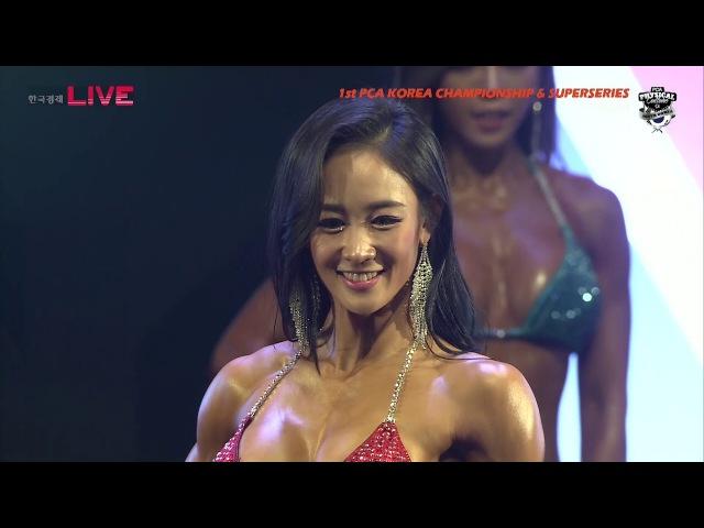 피씨에이 코리아(PCA KOREA)2017_비키니