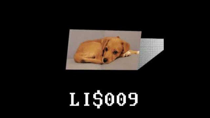 Subsided - LI$009 (Full Album) [low income $quad]