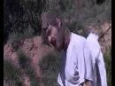 SEXY SUSHI Cheval clip