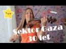 Сектор газа - 30 лет . Кавер на скрипке. Мария Романова. Violin cover