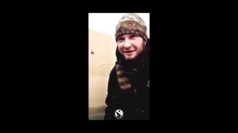 Волки в Сирии │ W O L V Σ S x C R Σ Σ ∆