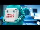 Минздрав предупреждает или ОТБИРАЕТ? Цель рекламы: убедить людей делиться орган...