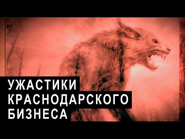 Ужастики краснодарского бизнеса   Аналитика Юга России
