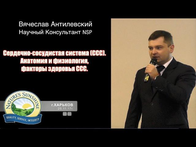 Атеросклероз сосудов, мифы и реальность - врач Вячеслав Антилевский