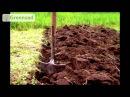 АЛЬПИЙСКАЯ ГОРКА Какие растения подходят