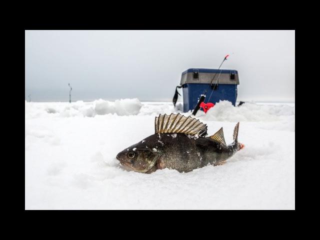 Секреты зимней рыбалки в Карелии. Сямозеро.