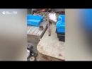 Капитан захваченного Украиной российского судна госпитализирован