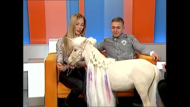 Маршмеллоу - мини-лошадь цирка Гии Эрадзе. Домашняя лошадь. Марат и Диляра Бикмаевы
