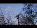 Евгений Бачурин - Дерева , вы мои дерева...