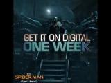 Человек-паук: Возвращение домой | 1 неделя