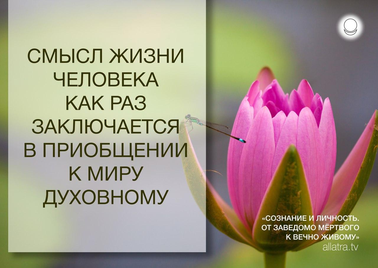 https://pp.userapi.com/c841325/v841325444/81443/6fYBZQiwM8s.jpg