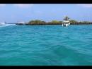 встречай нас Тропический рай!!!