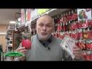 Томат Розовый мед проверенный уникальный сорт сибирской селекции суперсладский мясистый крупноплодный