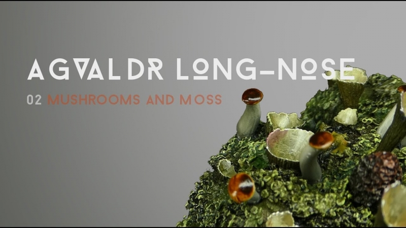 Ben Komets - Agvaldr Long Nose Moss and Shrooms