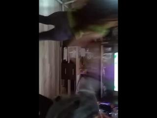 голые две бабы пьяные танцуют