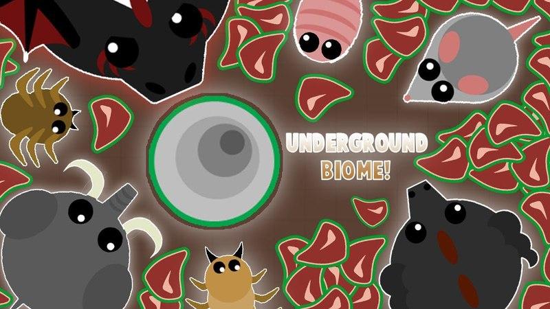 Подземельный биом