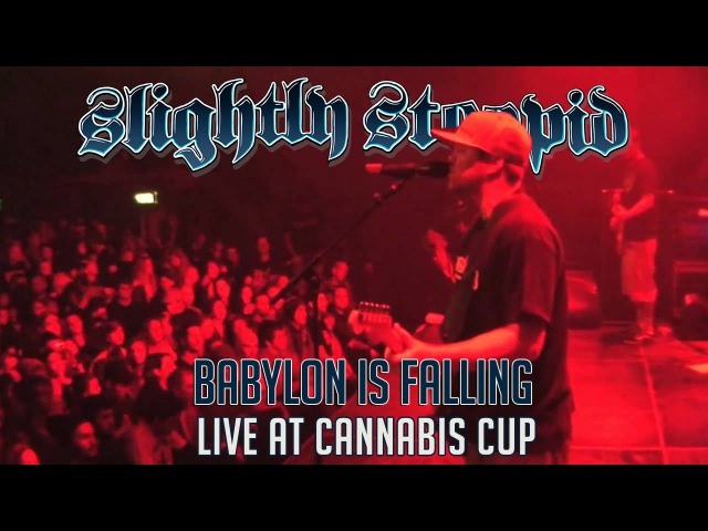 Babylon Is Falling - Slightly Stoopid (Live at Cannabis Cup)
