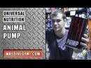 MG Обзор - Предтреник Animal Pump (Universal Nutrition) - MassiveGym
