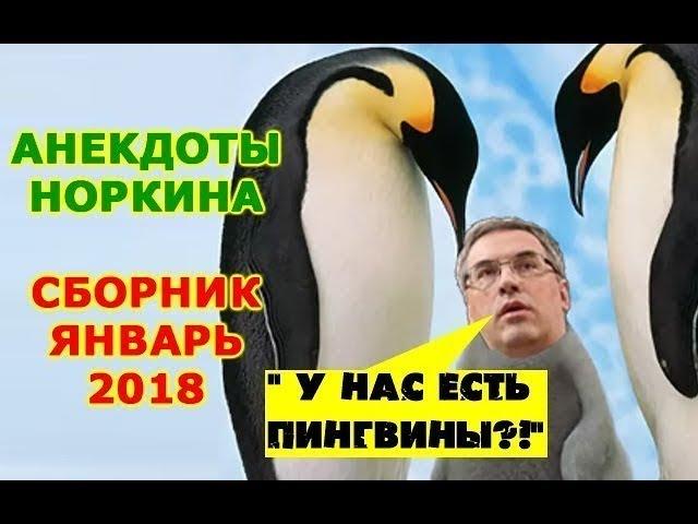 Зал лежал от смеха Вот и иди, иди, иди... Здесь Андрей Норкин и его анекдоты Январь 2018