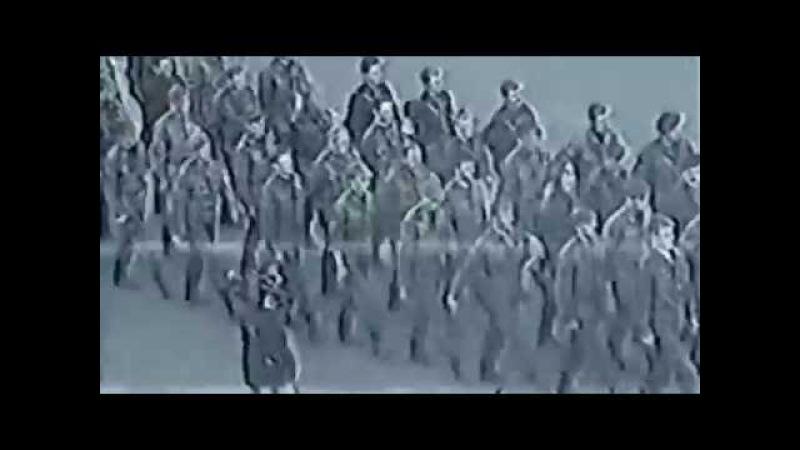 Оркестр К.Кримеца Глобалис - Все идет по плану