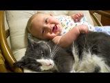 Очень милые малыши и кошки))