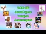 Антистресс игрушки Алиэкспресс - ТОП 10 необычных антистресс товаров!