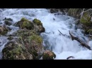 All Creatures of Our God and King - Mormon Tabernacle Choir