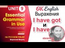 Unit 9 I have got или I have. Есть ли разница? Essential English Grammar, Красный Мерфи