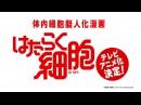 【公式】テレビアニメ『はたらく細胞』PV ~150万部突破の体内細胞擬人化