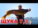 ОГРОМНАЯ ЩУКА 7,3 килограмма чуть не сломала спиннинг. Рыбалка на щуку в июле с ло ...