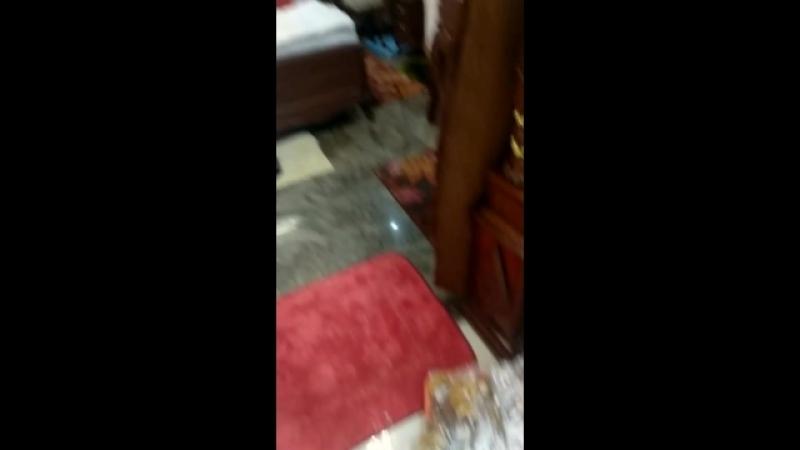 198 Лингамов проявленных материализовавшихся на Шиваратри 2018 в комнате Сатья Саи Бабы в Бангалоре