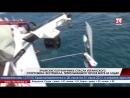 Крымские пограничники спасли украинского спортсмена-экстремала, переплывавшего Чёрное море на лодке У берегов Западного Крыма со