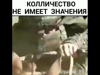 Kavkaz vine сила не в количестве