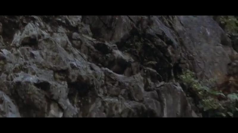 ЖЕНЩИНА ДЕМОН-2 ,,Оуацу в бегах,, (1968г)