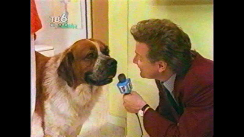 Т/С Дом собаки 9 cерия (1990г)