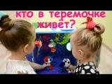 Алиса и Николь о БИЗИКУБЕ Времена года :)