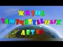 жизнь замечательных детей Видеосъёмка в детском саду Радуга