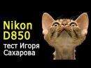 Игорь Сахаров Nikon D850 в студийных условиях Тест