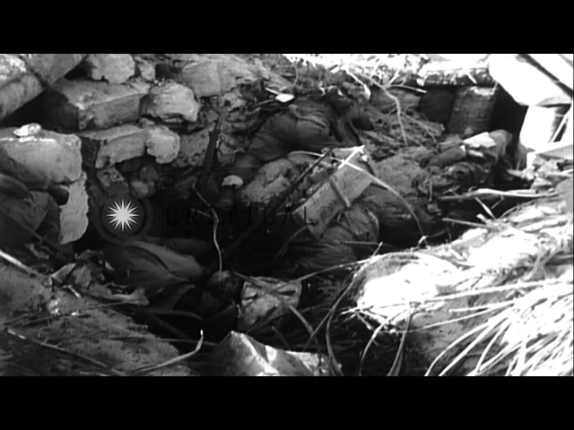 US Marines rest and build bunkers during the battle of Tarawa in Pacific Theater HD Stock Footage