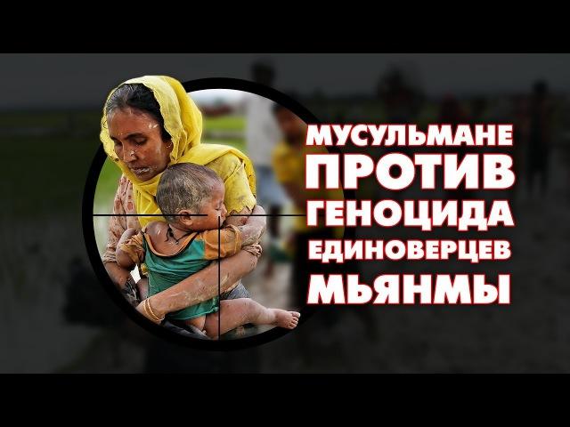 Мусульмане России выступили против геноцида единоверцев Мьянмы