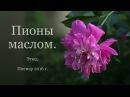 Пионы маслом Этюд Пленэр 2016 Мемориальный дом музей М И Цветаевой