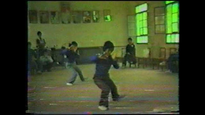 1984 陳家溝にて:陳氏太極拳(陳素英・陳春愛)Chenjiagou Chen Taijiquan
