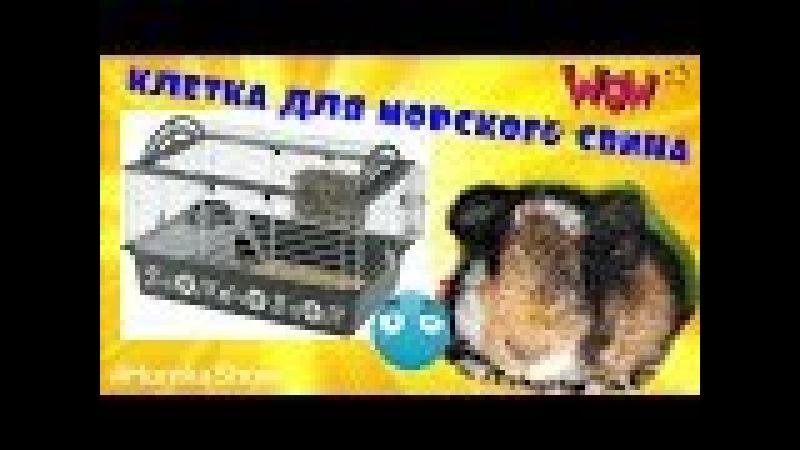 КЛЕТКА ДЛЯ МОРСКОЙ СВИНКИ Ferplast 80 HomkaShow